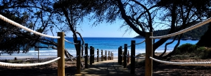 beaches around Ibiza and playa d'en Bossa